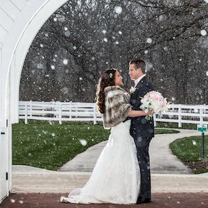 Danada House Winter Wedding